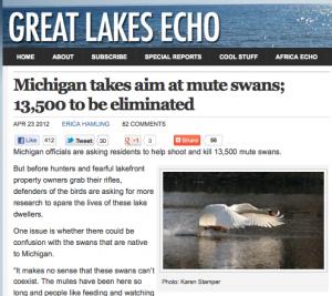 Great Lakes Echo - Killing Swans