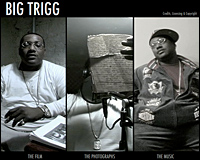 project-kb-2006-bigtrigg