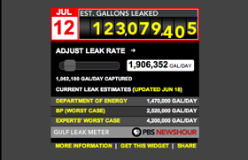 project-kb-2010-Gulf_Oil_Leak_Meter_SS